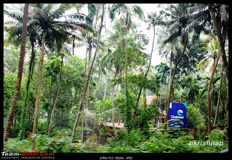 A Trip Again - Down South - Guruvayoor - Kanyakumari - Munnar - Bangalore-img_9343.jpg