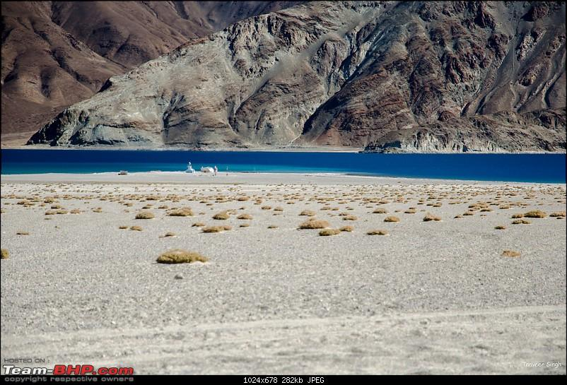 18 Passes, 15 lakes and 2 breakdowns : Ladakh and Lahaul call again-dsc_dsc_6456_lrxl.jpg