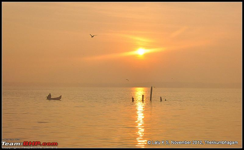 Name:  DSC_6289.jpg