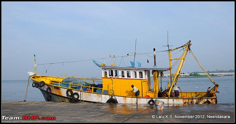 Name:  DSC_6339.jpg