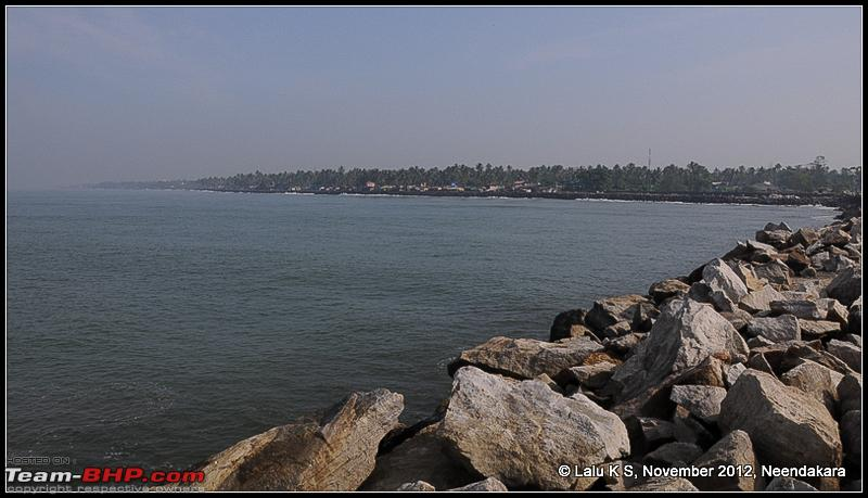 Name:  DSC_6489.jpg
