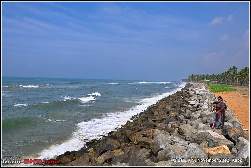 Name:  DSC_6522.jpg