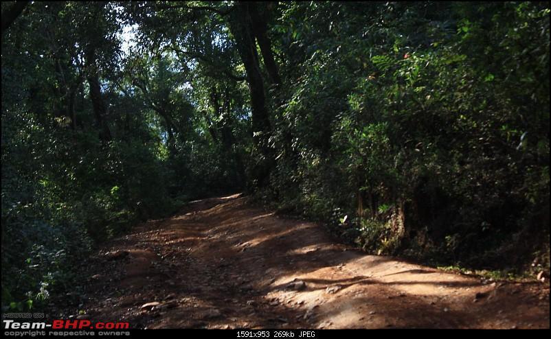 Weekend Trip : Bangalore - Kollur - Kodachadri -Sringeri - Halebidu-02-kodachadri-road.jpg