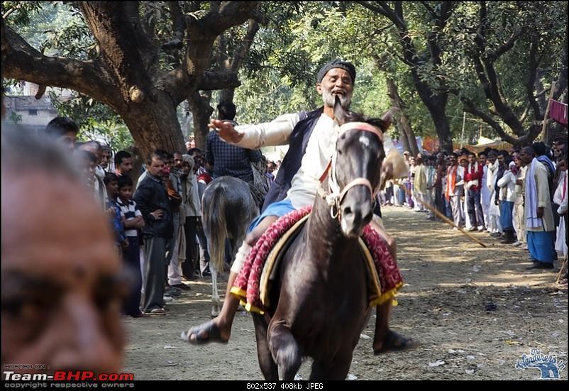 Bihar - A Bullet ride to Sonepur Mela & a Safari drive to Valmiki National Park-sonepur69.jpg