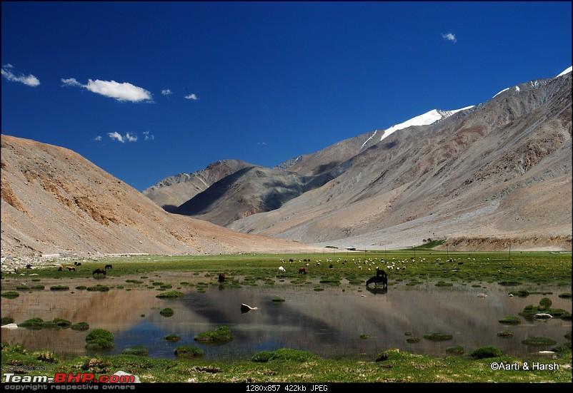 Six Wanderers Ride to Ladakh-27dsc_6346.jpg