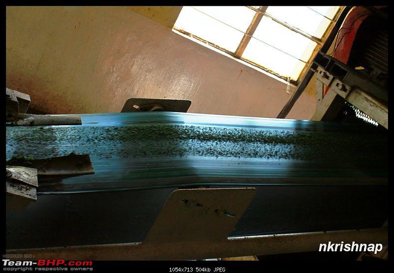 A Trip Again - Down South - Guruvayoor - Kanyakumari - Munnar - Bangalore-img_9766.jpg