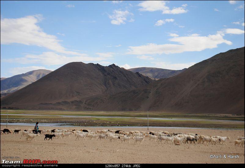 Six Wanderers Ride to Ladakh-51dsc_6772.jpg