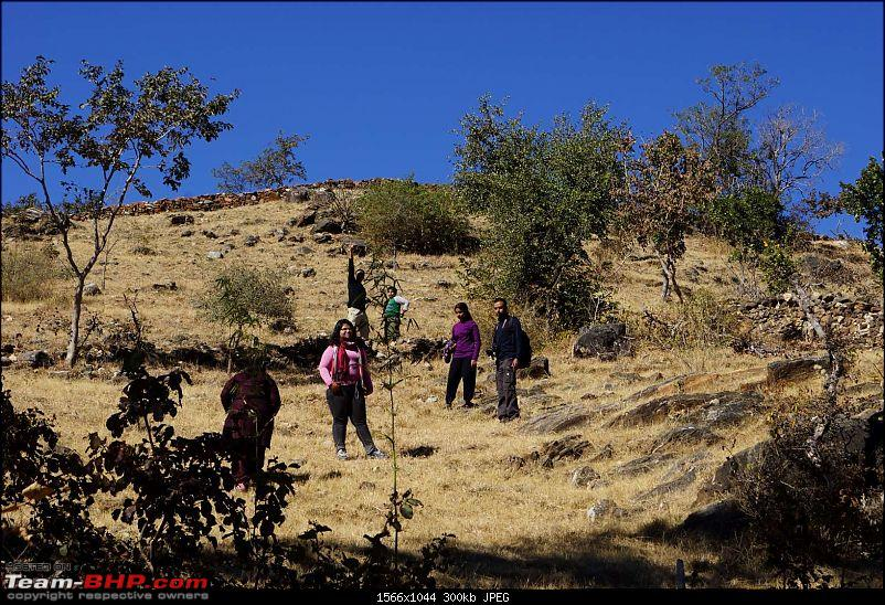 Hawk-On-Fours� (H-4�) Roadtrip: Kumbhalgarh & Ranakpur-walk-5.jpg