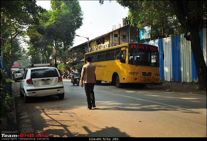 Flamingo watching at Sewri-Mumbai-dsc_0535.jpg
