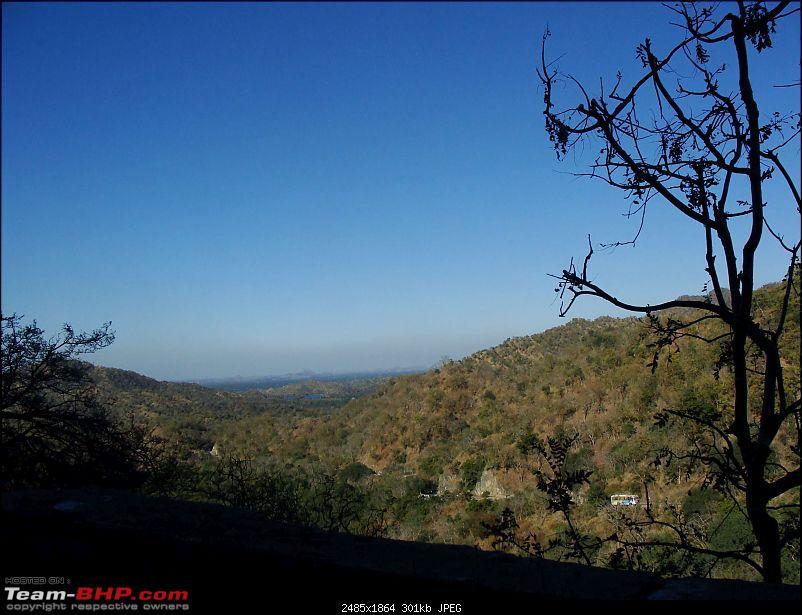 Hawk-On-Fours� (H-4�) Roadtrip: Kumbhalgarh & Ranakpur-fromranakpur-2.jpg