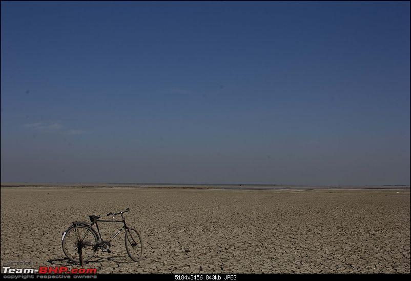 Bangalore to Gir National Park & Rann of Kutch-20121227_mg_4911.jpg