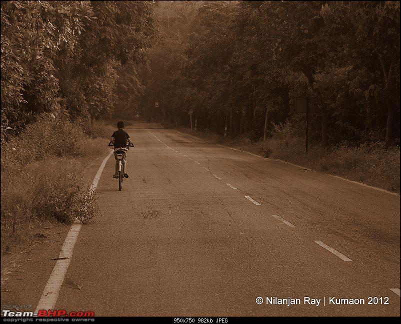 Fullmoon in Kumaon: Snapshots from a 7000km cross-country roadtrip-dsc_7991.jpg