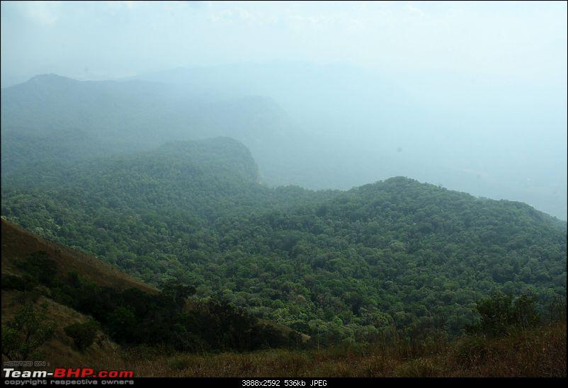 A Bullet through the Heart of Malnad-img_0960.jpg