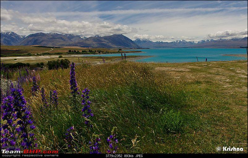 The Dramatic Landscape of South Island, New Zealand-pic5.jpg