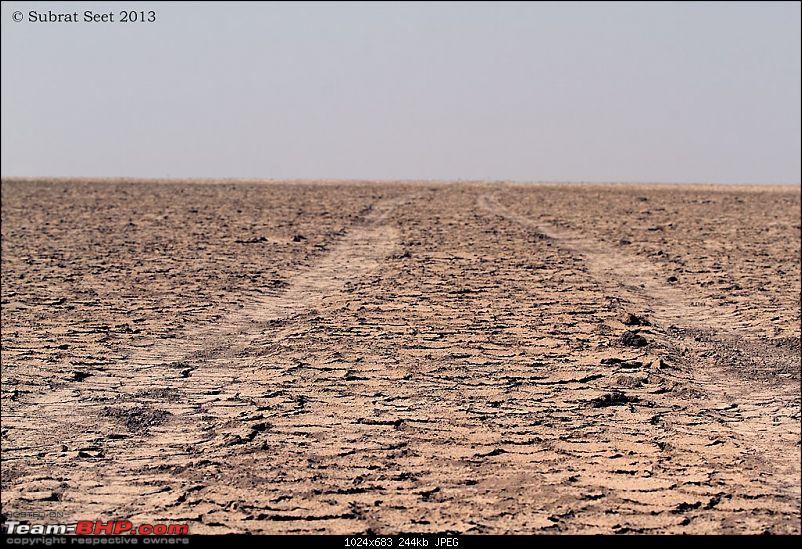 Amazing Mud Desert - Little Rann of Kutch. A Photologue-292-copy.jpg