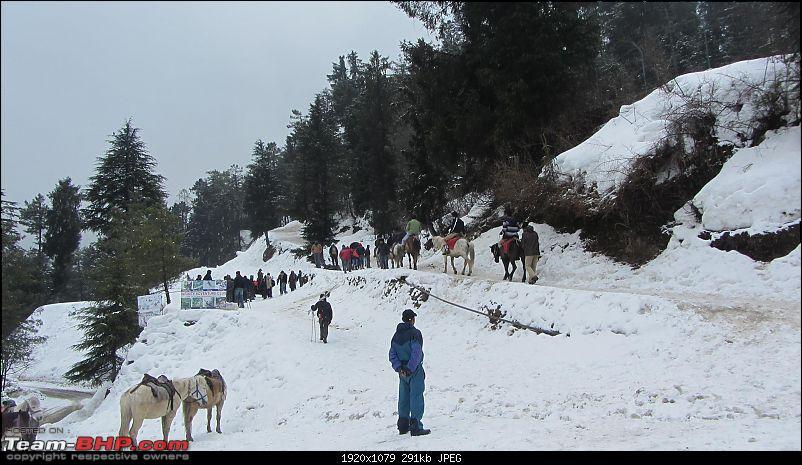 Mount Abu -> Delhi -> Shimla-8-kufri.jpg