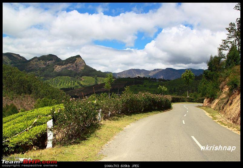 Munnar - February 2013 Edition-img_0836-copy.jpg