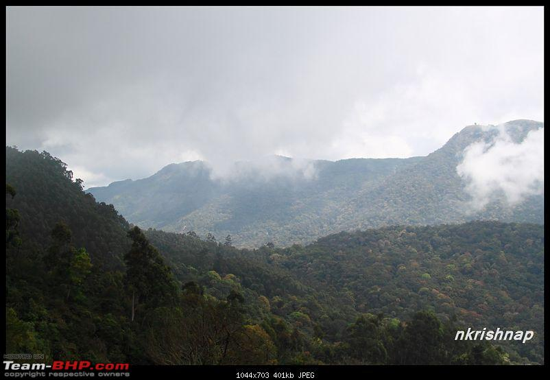 Munnar - February 2013 Edition-img_0881-copy.jpg