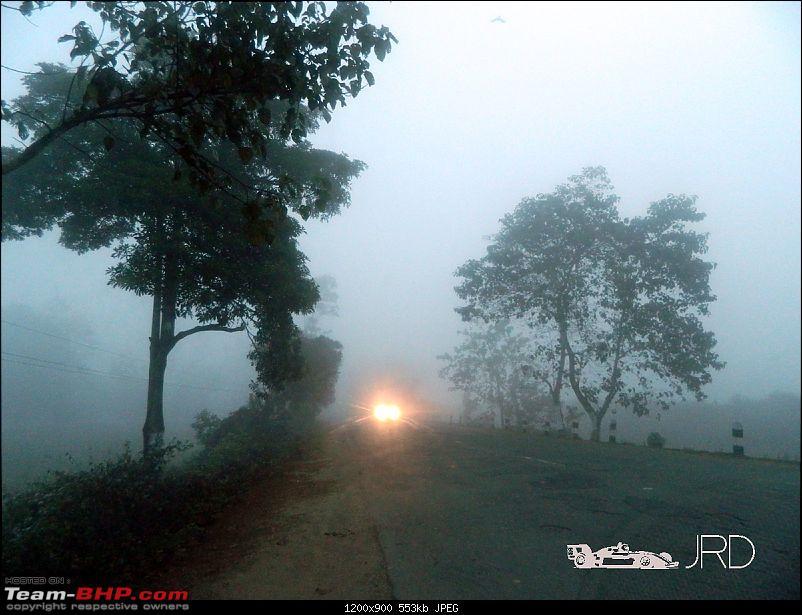 A trip to Dehing Patkai Rain Forest, Dibrugarh (Assam)-fog4.jpg