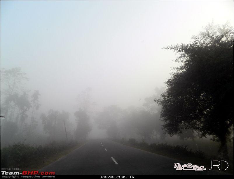 A trip to Dehing Patkai Rain Forest, Dibrugarh (Assam)-jrd1.jpg