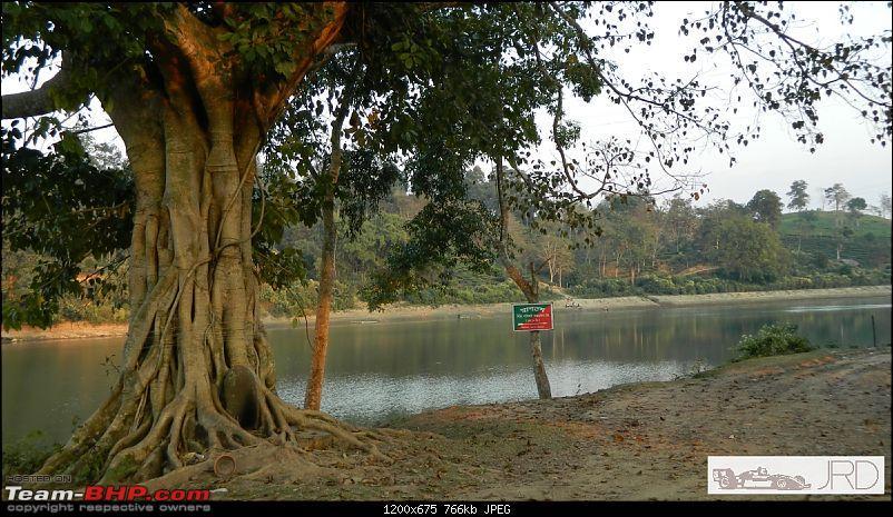 A trip to Dehing Patkai Rain Forest, Dibrugarh (Assam)-10.jpg