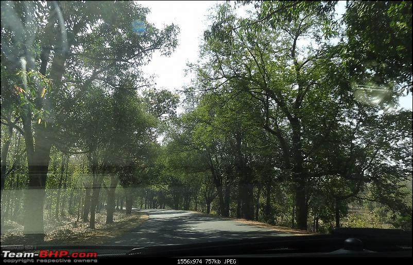 A drive to the Sea : Bhilai to Puri for a splendid holiday-dsc00662.jpg