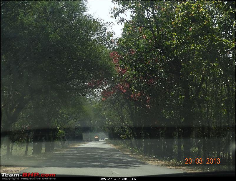 A drive to the Sea : Bhilai to Puri for a splendid holiday-dsc00669.jpg