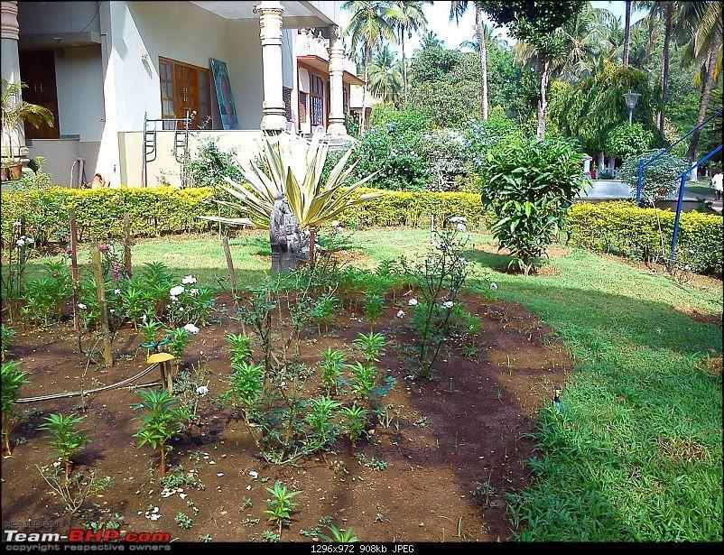 Bangalore-Sringeri-Horanadu-Dharmasthala-Kukke-Bangalore-dsc_0216.jpg