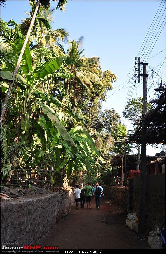 Reliving the innocence at a rustic Konkan village (Velas turtle festival)-090-dsc_1907.jpg
