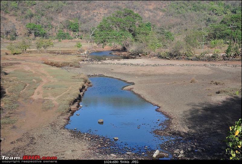 Reliving the innocence at a rustic Konkan village (Velas turtle festival)-093-dsc_1915.jpg