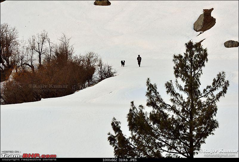 Hunting for Snow - Kinnaur 2013-day-3.1-21.jpg