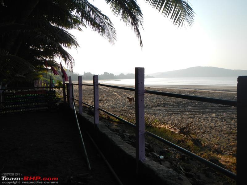 Name:  beach_fence.jpg Views: 3911 Size:  300.8 KB