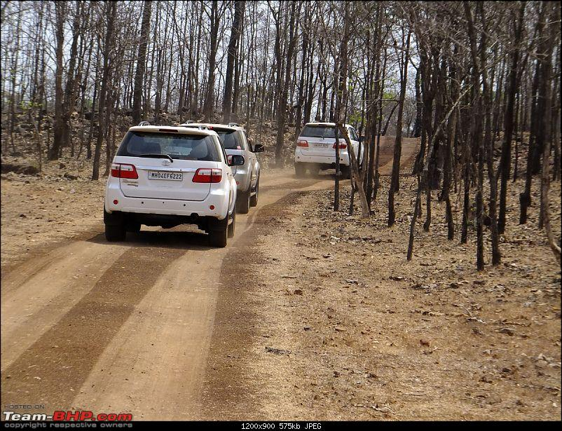 The Fortuner Posse rides again - Into the Jungle!-dscf1008.jpg