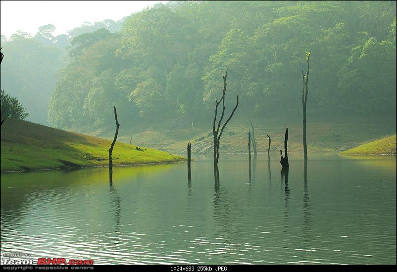 One more Wildlife Trip - Gavi, Thekkady-thekkady1.jpg