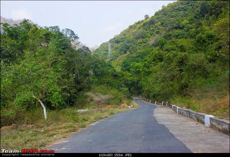 Bangalore - Ooty - Manjur - Mulli - Mannarkkad Trip-img_2377-large.jpg