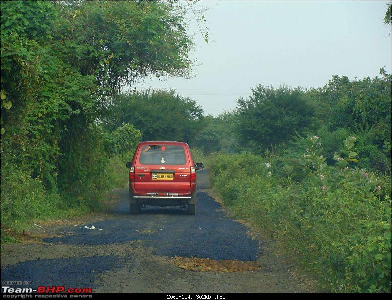 Hawk-On-Fours® (H-4®) Roadtrip: Reminiscences of Gir Forest-1k300.jpg