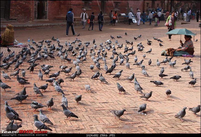 Photologue : A Trip to Kathmandu, Nepal-img_7735.jpg