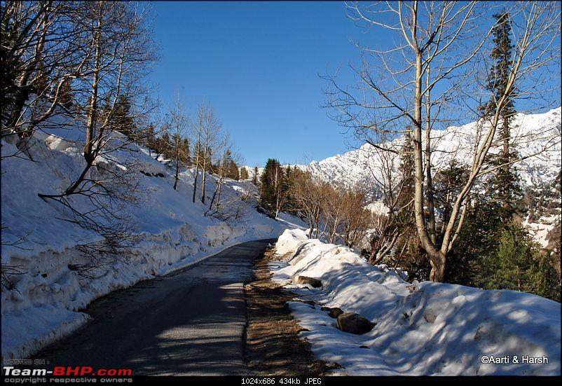 Of White-Outs and Landslides-dsc_1231.jpg