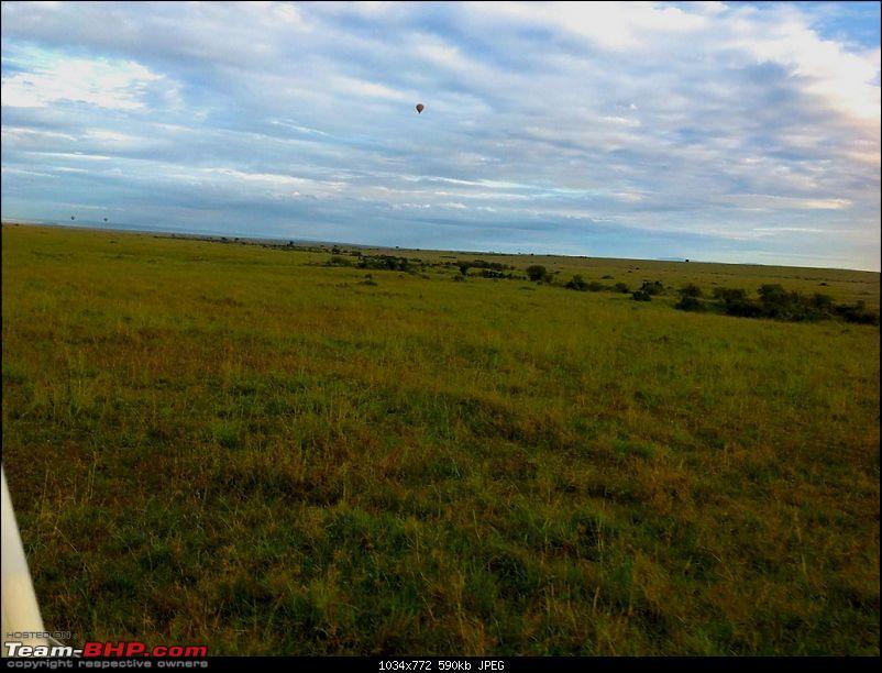 Masai Mara - A Quintessential African Safari-img_0425.jpg