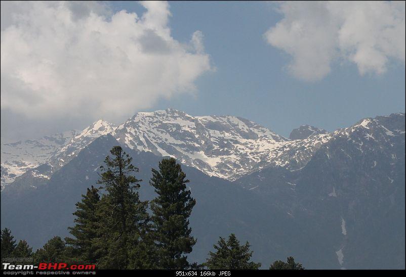 Kashmir & a Scorpio!-bv3.jpg