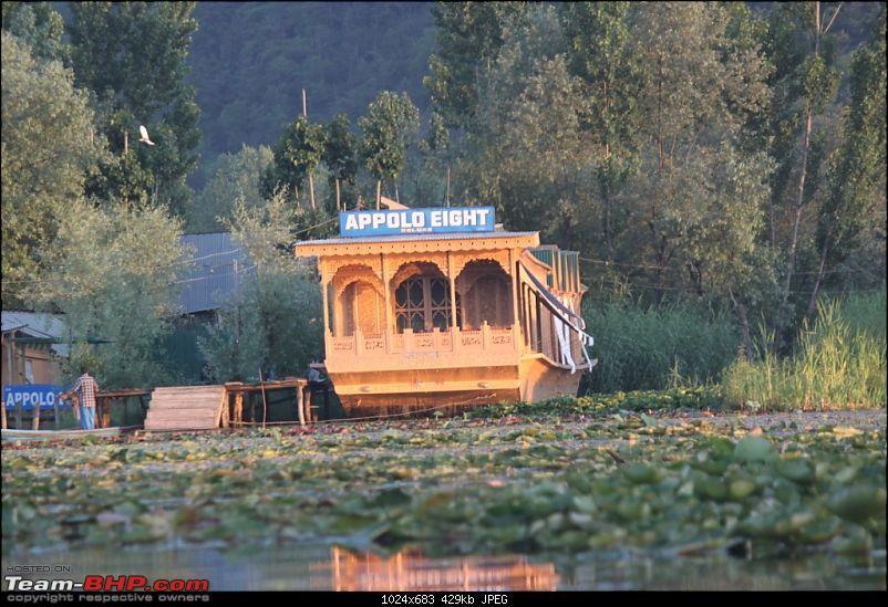 Kashmir & a Scorpio!-img_0386.jpg