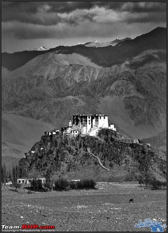 Name:  Ladakh Changthang6.jpg Views: 11738 Size:  94.2 KB