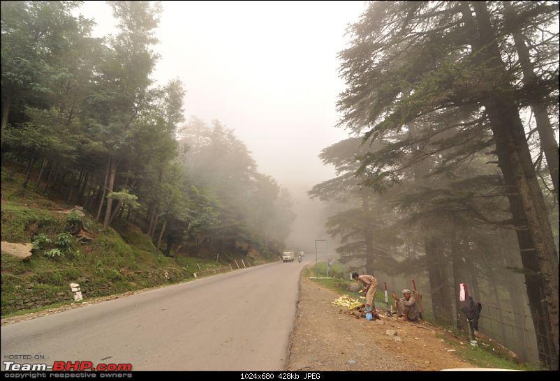 We ran out of road!-dsc_0991.jpg