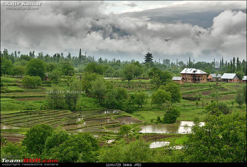 Kashmir - Heaven, where you live to experience it-kashmir-2013-33.jpg