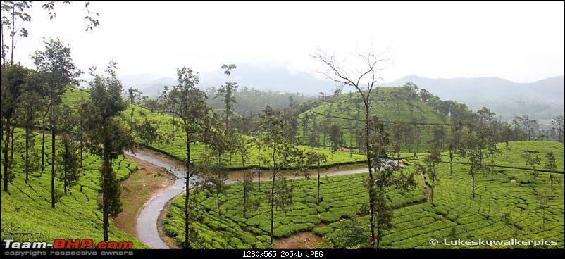 Tea Gardens, Misty clouds and a bit of offroading: A weekend of fun at Sinnadorai-29.jpg