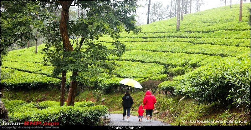Tea Gardens, Misty clouds and a bit of offroading: A weekend of fun at Sinnadorai-30.jpg