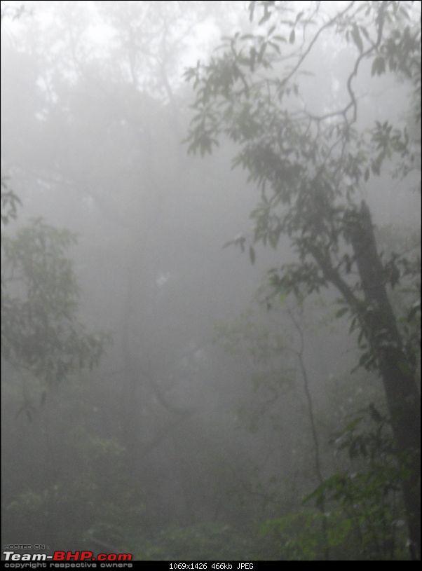 Bhimashankar – My first official Trek-83dense-cloud-way-back.jpg