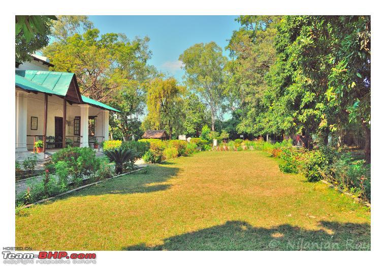 Name:  lawn.jpg Views: 1297 Size:  682.6 KB