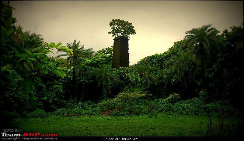 Monsoon Break : Hills, waterfalls and temples!-dsc_0802-touch.jpg