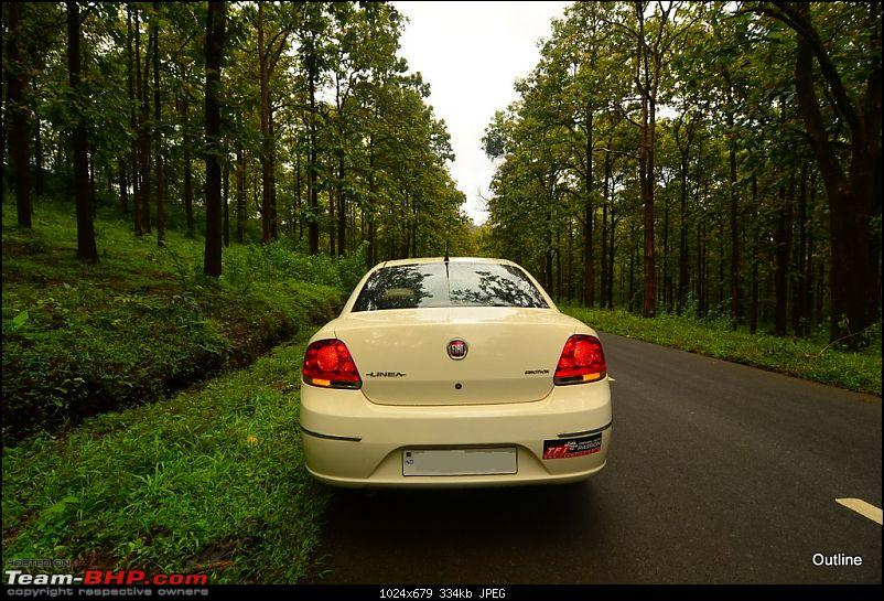A Date with Monsoon at Wayanad-1ram_5078.jpg